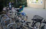11_sleeping-on-bike_momo_20011012 (115KB)